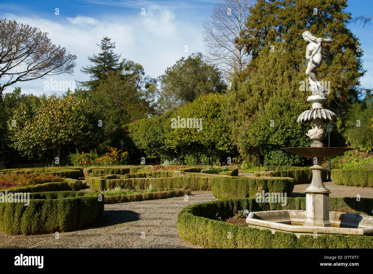 Malakoff Garten, Teil des Imperador Gärten, Funchal, Madeira, Portugal Stockbild