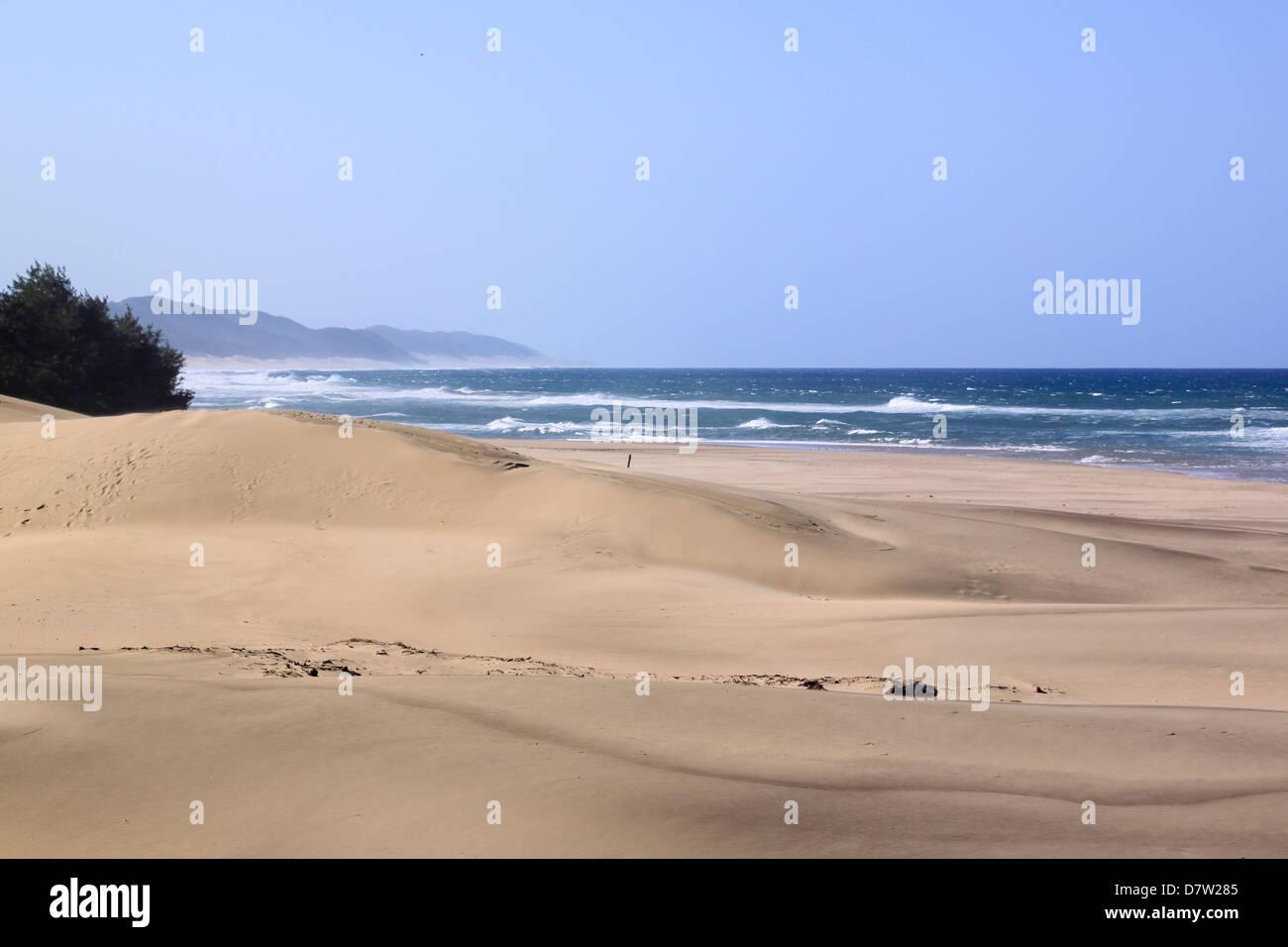 Der Strand, St. Lucia Wetlands, Kwa-Zulu Natal, Südafrika Stockfoto