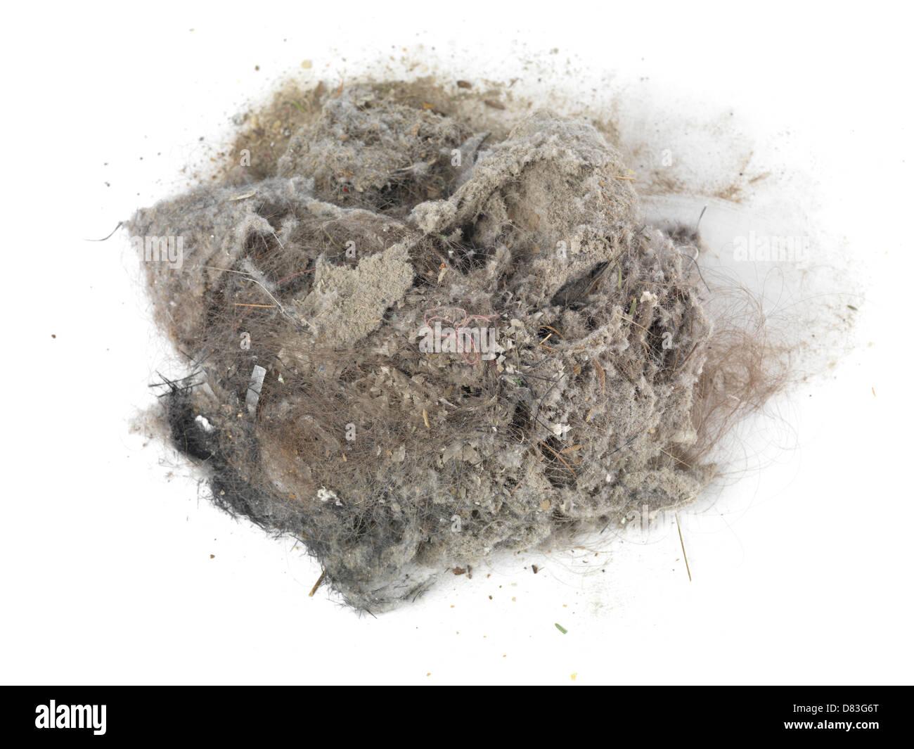 Haufen von Staub und Haare gesammelt mit einem Staubsauger isoliert auf weißem Hintergrund Stockbild
