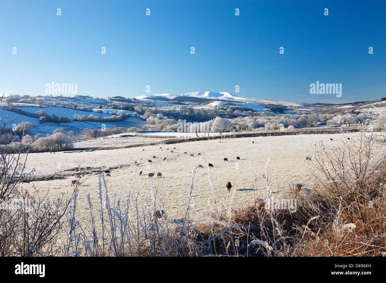 Black Mountain Brecon Beacons Powys Wales im winter Stockbild