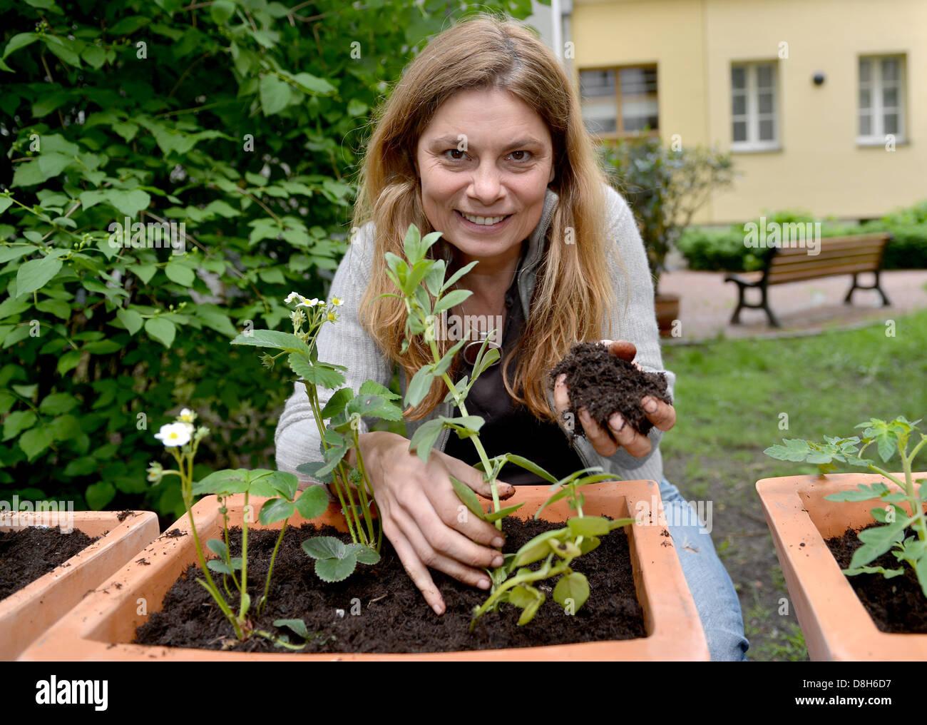 koch sarah wiener pflanzen pflanzen auf einer pressekonferenz in berlin deutschland 29 mai. Black Bedroom Furniture Sets. Home Design Ideas