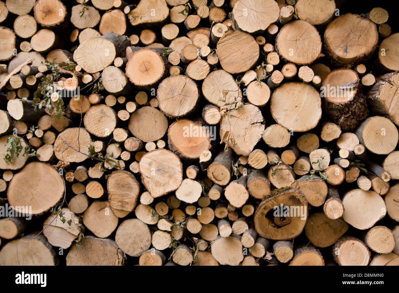 Feuer Holzstruktur, alternative Energie. Stockbild