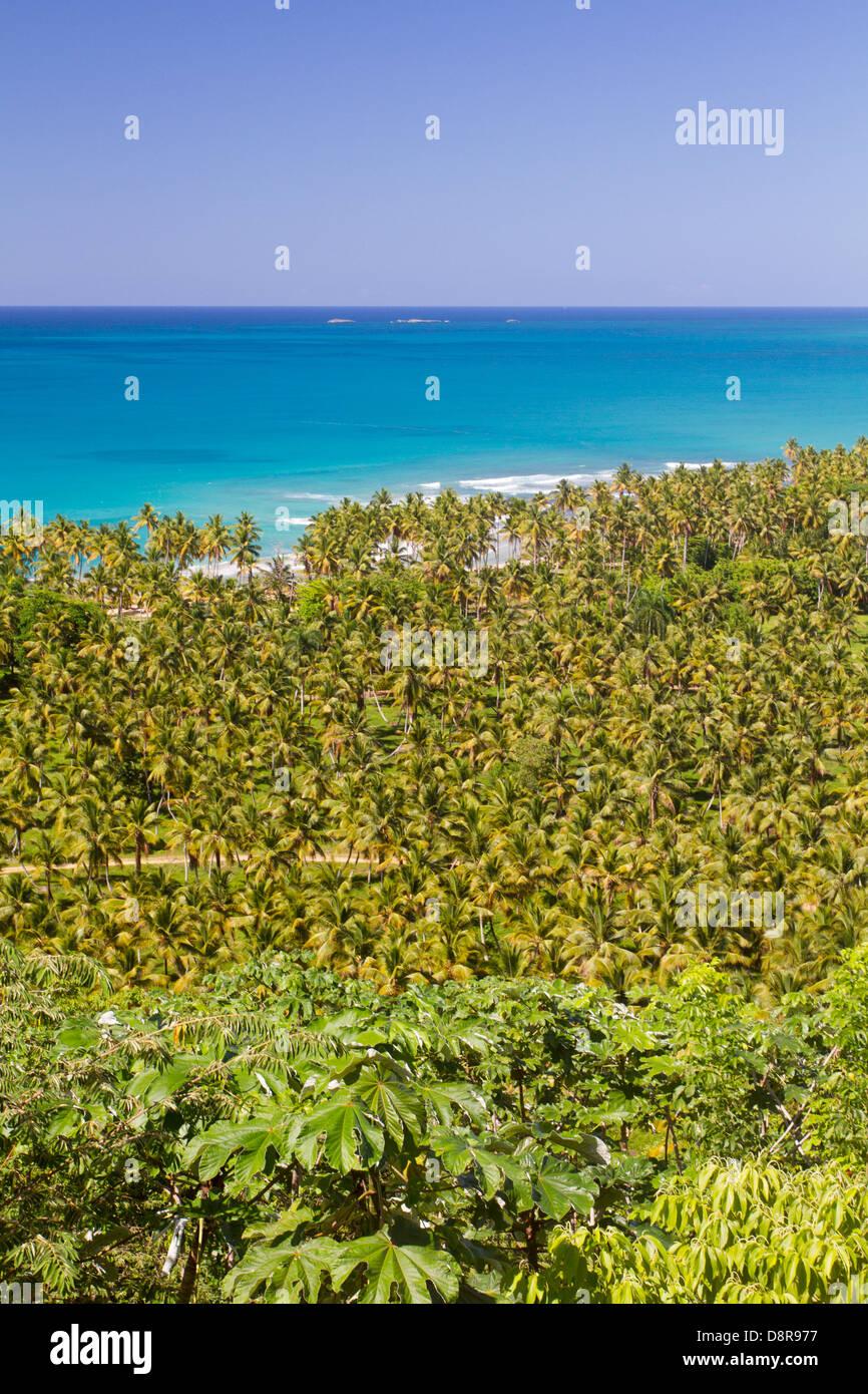 Blick vom Boulevard Turistico del Atlantico, Dominikanische Republik. Stockbild