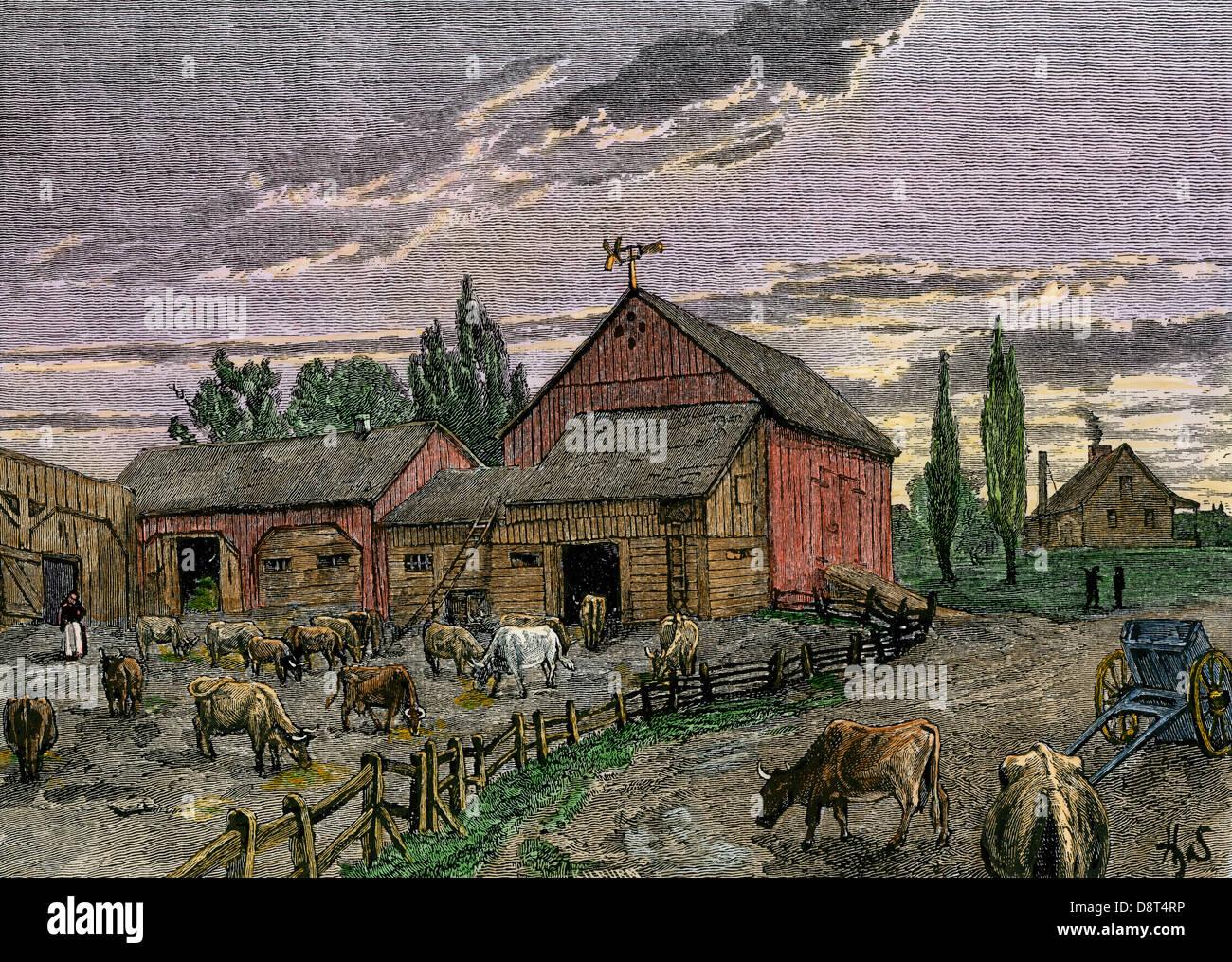 Vieh und Scheunen eines kanadischen Homestead um 1850. Hand - farbige Holzschnitt Stockbild