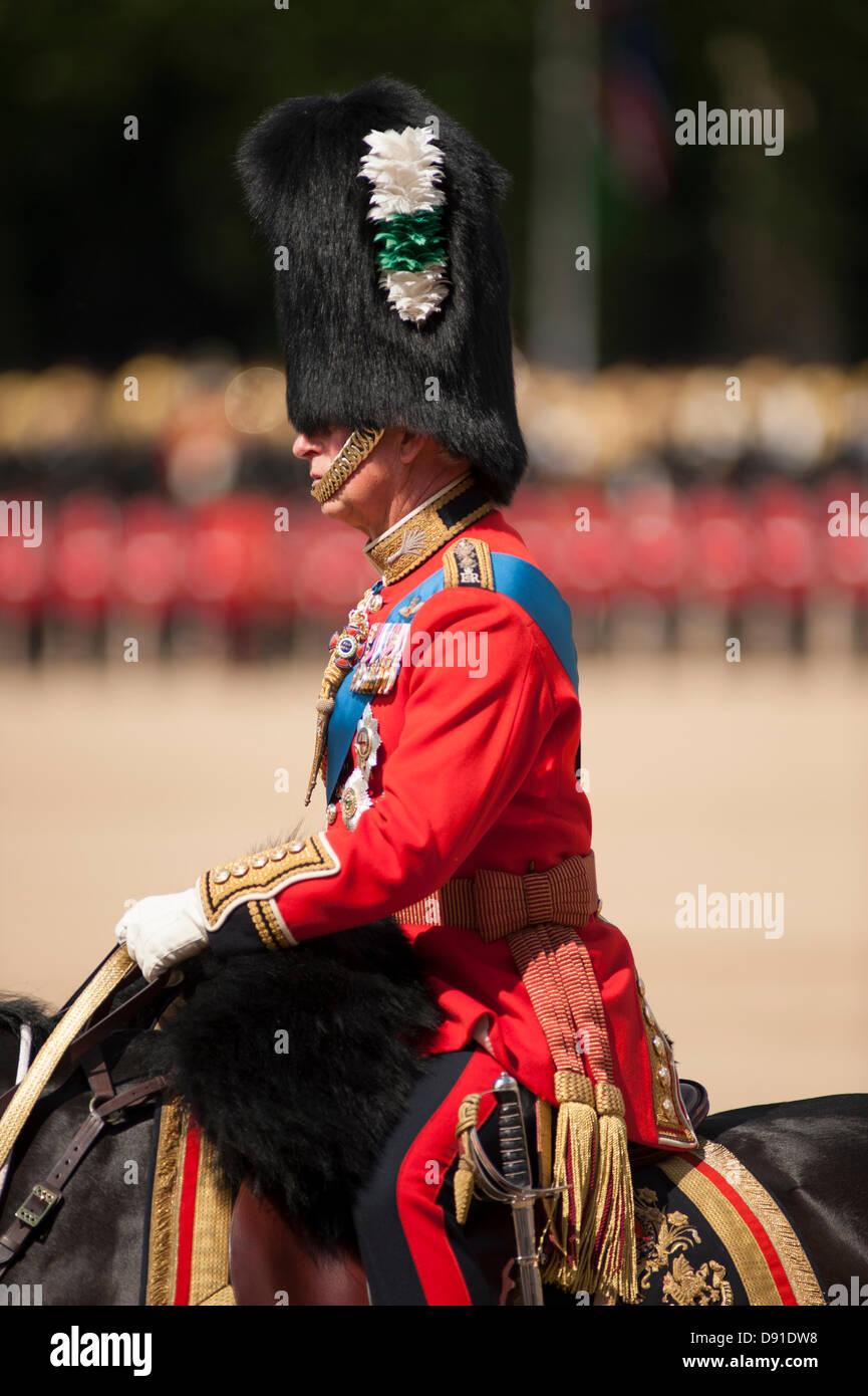 Westminster, London, UK. 8. Juni 2013.  Die Farbe des 1. Bataillons Welsh Guards ist in Anwesenheit von HRH The Prince Of Wales, gesehen hier marschierten. Es gibt mehr als 200 Pferde auf Parade, und mehr als 400 Musiker aus allen den Haushalt Division Bands & Korps der Trommeln.  Bildnachweis: Malcolm Park/Alamy Live-Nachrichten Stockfoto