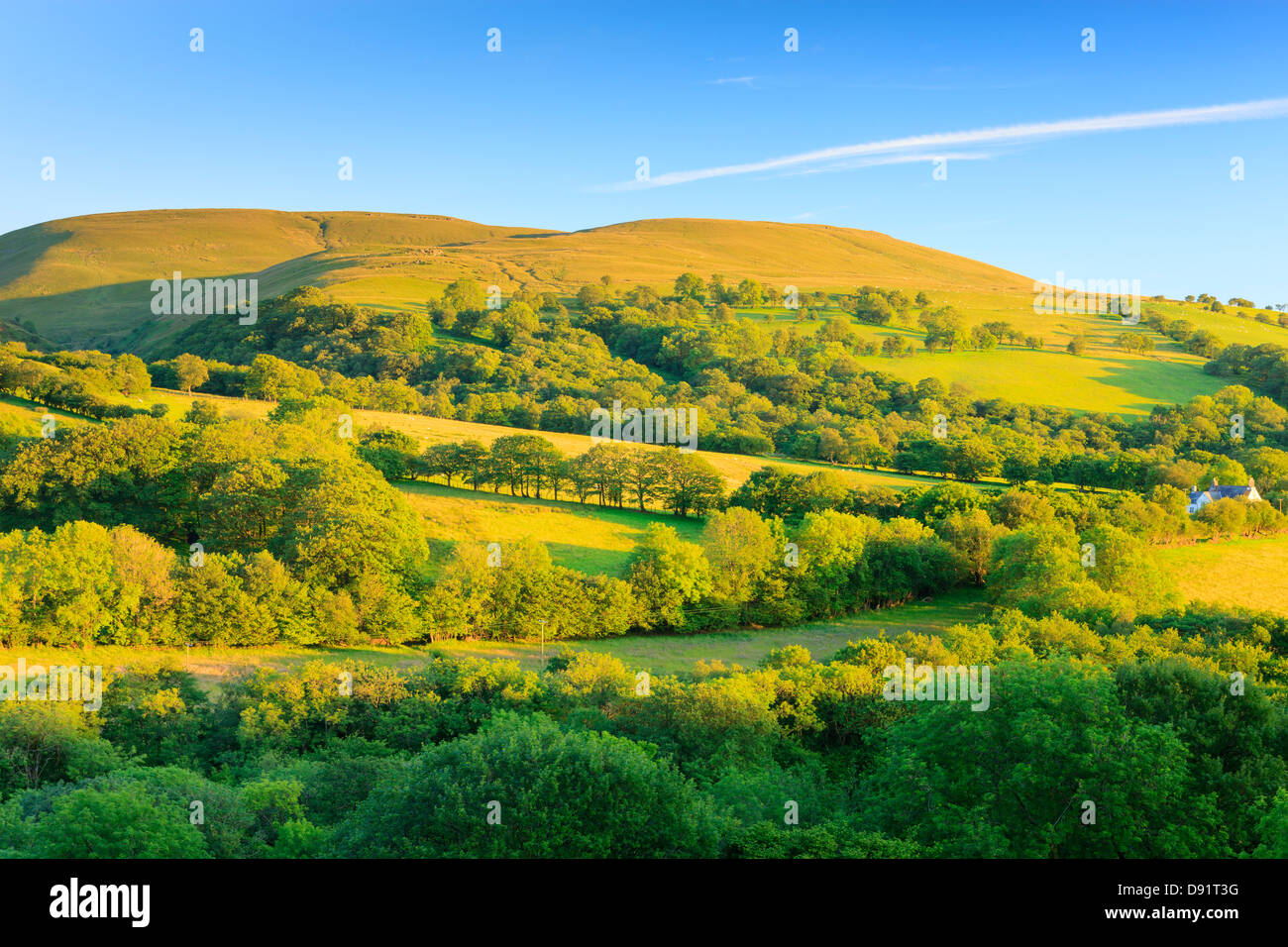 Ländliche Gegend Llanddeusant (Y Mynydd Du) Black Mountain Brecon Beacons National Park Carmarthenshire Wales Stockbild