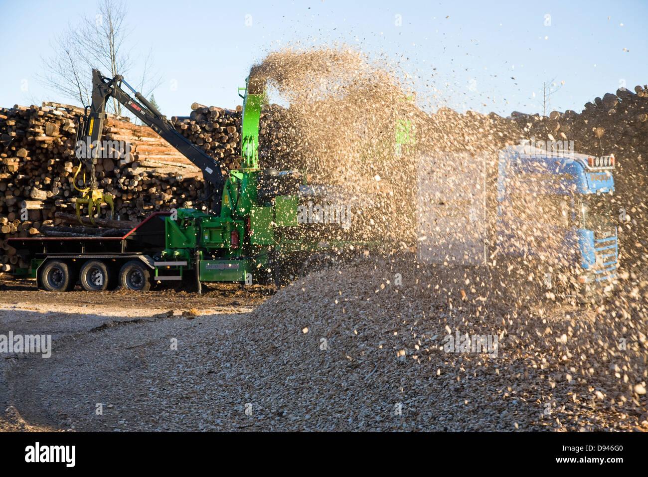 Produktion von Holz-Chips, Schweden. Stockbild