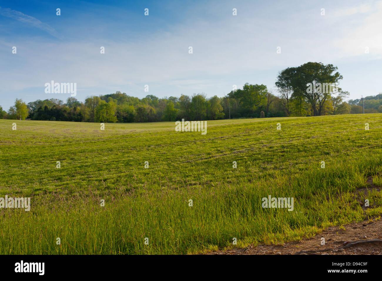 Geflügelte lieber Park, Johnson, Tennessee Stockbild