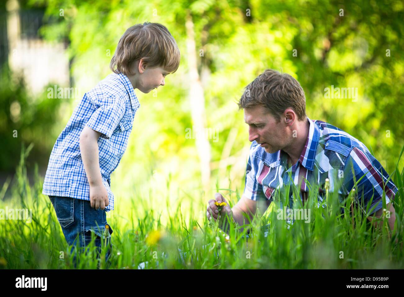 Vater und Sohn spielen im Park. Stockbild