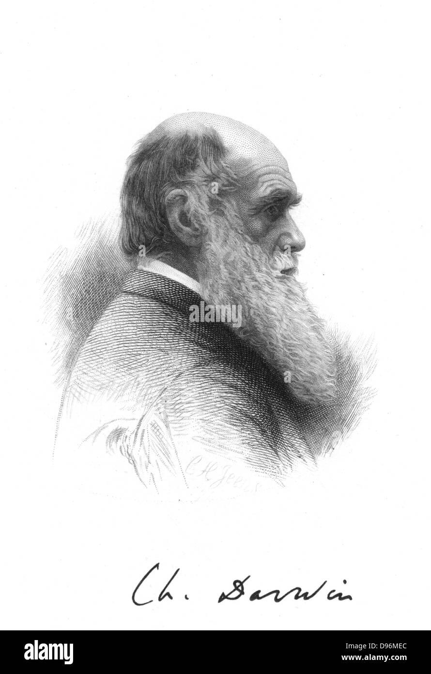 Evolution Theory Stockfotos & Evolution Theory Bilder - Seite 2 - Alamy
