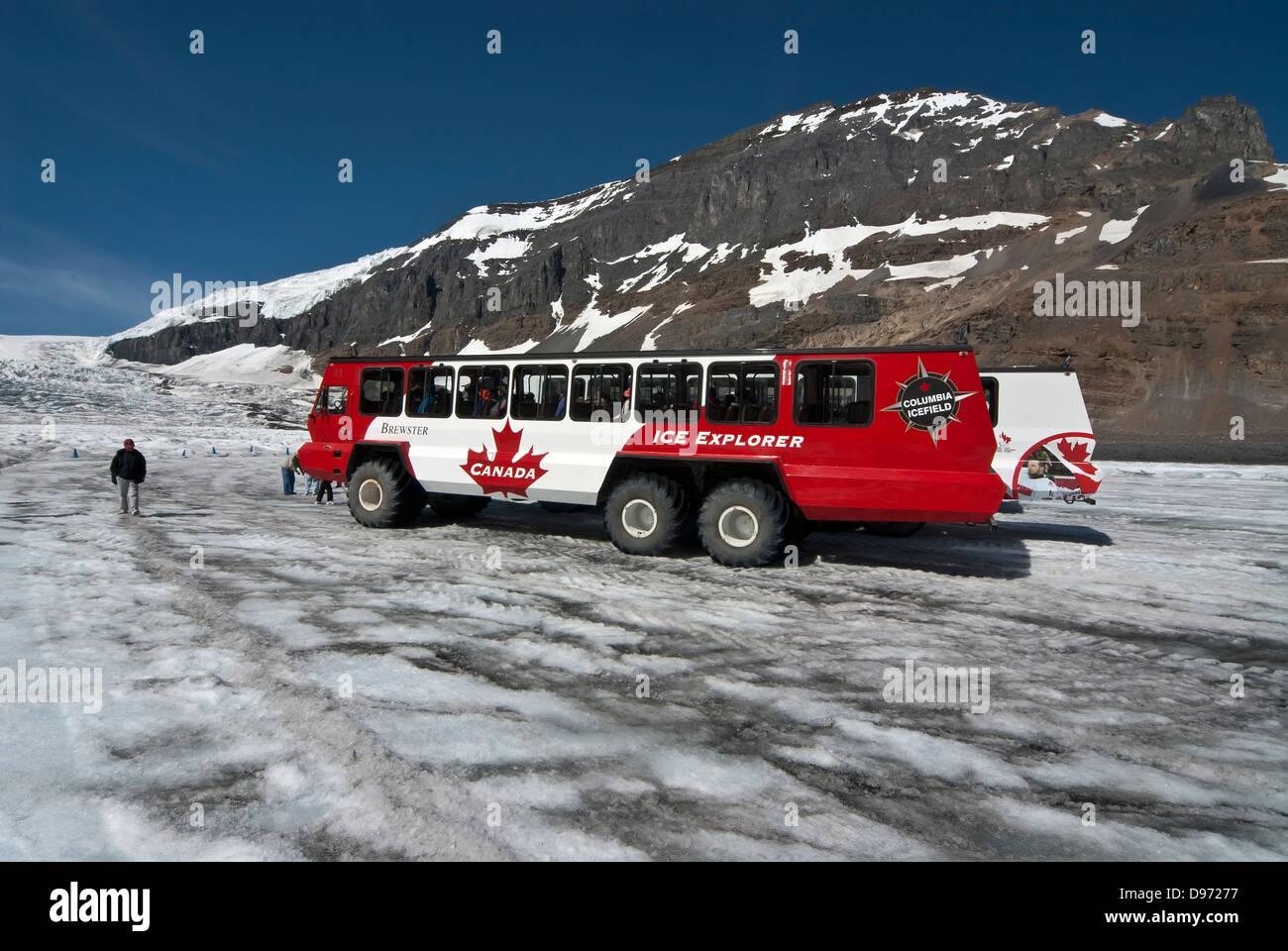 Ice Explorer am Athabasca Gletscher, Kanadische Rockies Stockbild