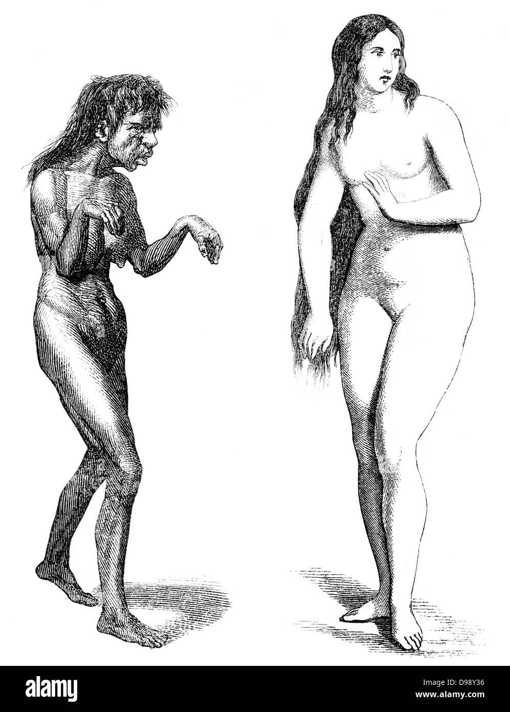Rassismus, Schönheitsideal der 5. Jahrhundert Frauen