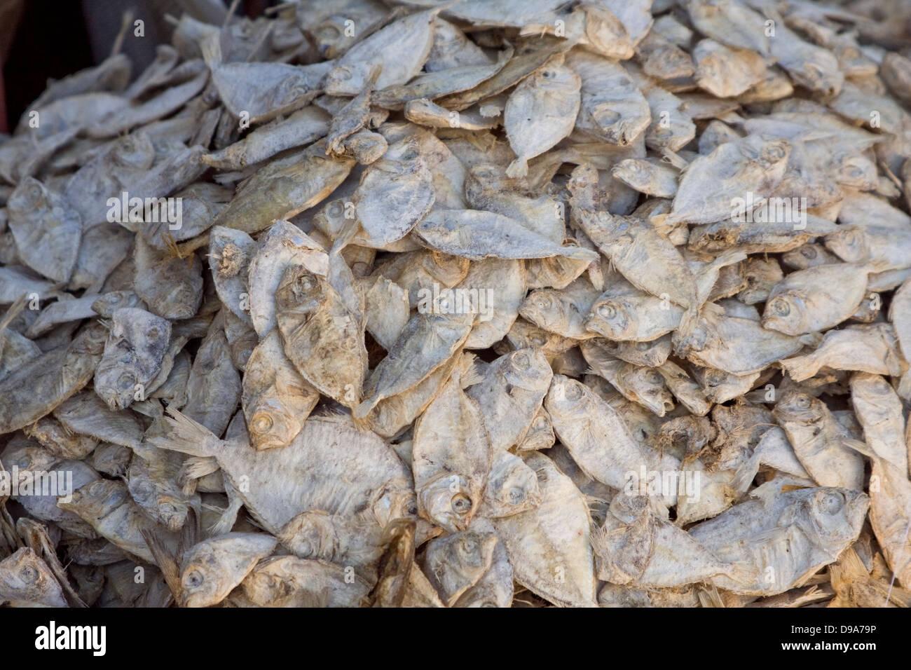 Asien, Indien, Karnataka, Madikeri, getrockneter Fisch auf dem Markt Stockbild