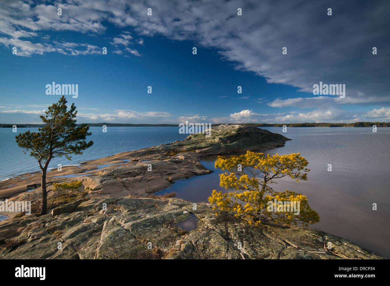 April abends auf der Insel im See Brattholmen Råde Vansjø, Kommune, Østfold fylke, Norwegen. Stockbild
