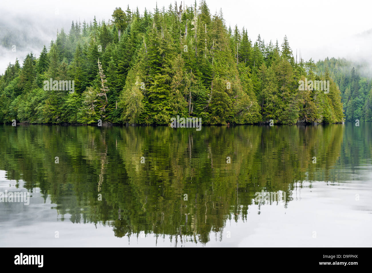 Küstenlandschaft in Great Bear Rainforest, British Columbia, Kanada Stockbild