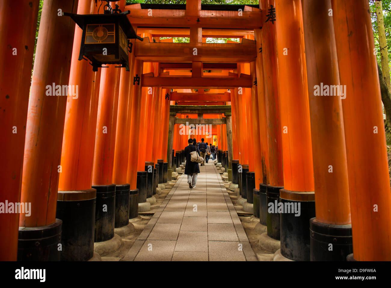 Die endlosen Red Gates von Kyotos Fushimi Inari Schrein, Kyoto, Japan Stockbild