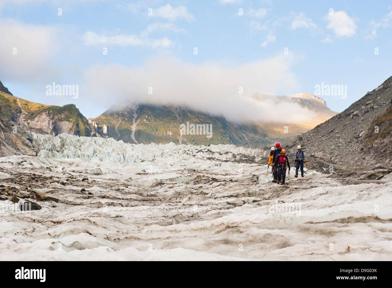 Touristen auf einem Eisklettern Reise, Fox Glacier, Westland National Park, UNESCO-Weltkulturerbe, Südinsel, Stockbild