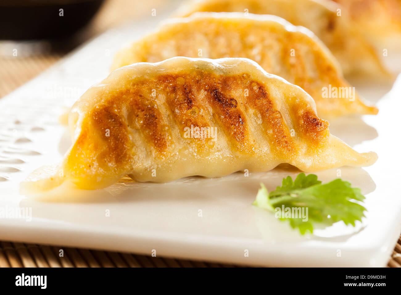 Hausgemachte Asian Vegeterian Potstickers mit Sojasauce und Schweinefleisch Stockbild