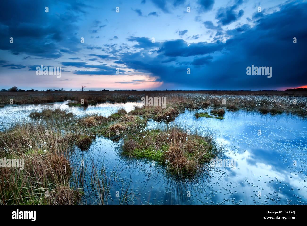 dunkle Gewitterwolken über See bei Sonnenuntergang, Fochteloerveen Stockbild