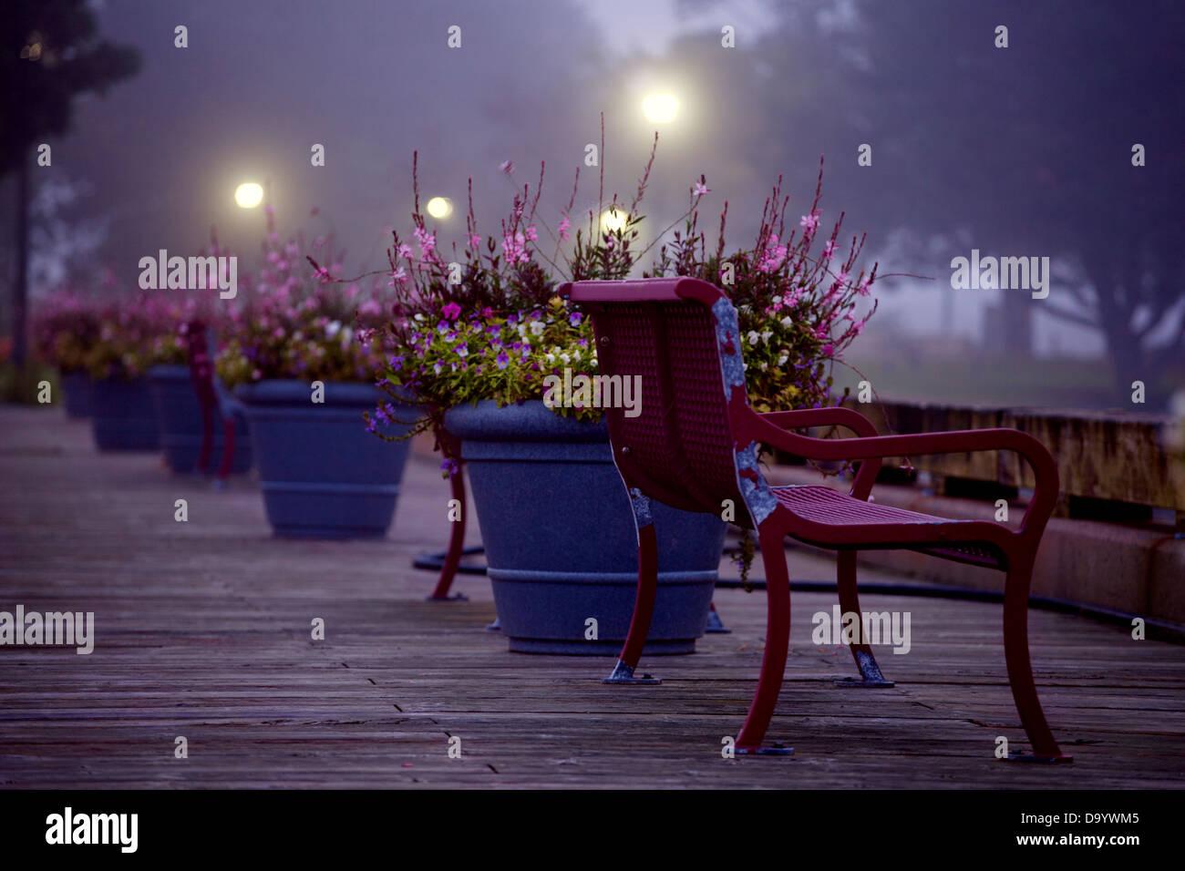 Low-Light Szene der Park Bench und Blumentöpfe auf einem Holzsteg. Stockbild