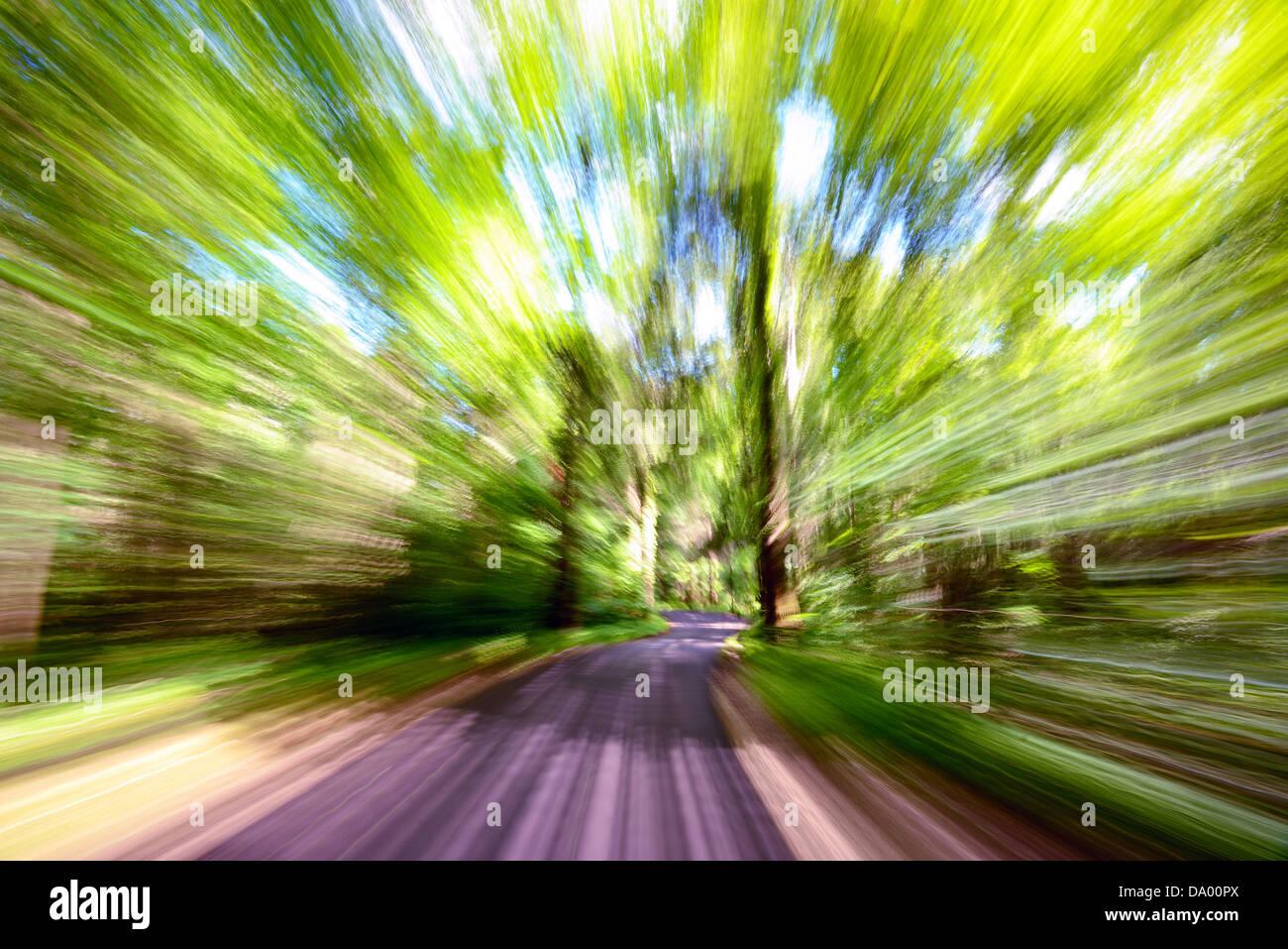 Bewegungsunschärfe auf einem Waldweg Stockbild