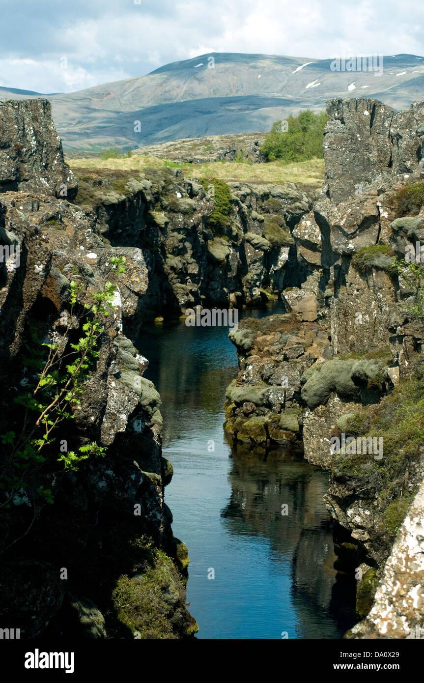Ein Riss in der Landschaft des isländischen Thingvellir National Park markiert wo amerikanische und euroasiatischen Stockbild