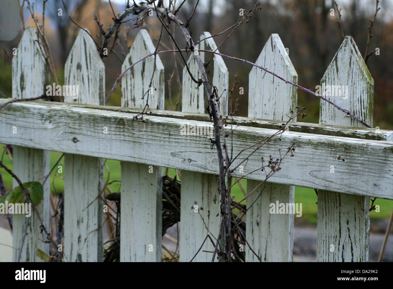 weißer zaun alten verwitterten rebe gartenhaus bauernhof horizontale
