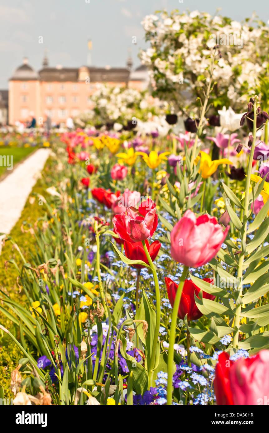 Bett, Außenaufnahme, Dekoration, Wiese, Rasen, Gärtnerisch Gestaltet, Natur, Blüte, Blatt, Sommer, Stockbild
