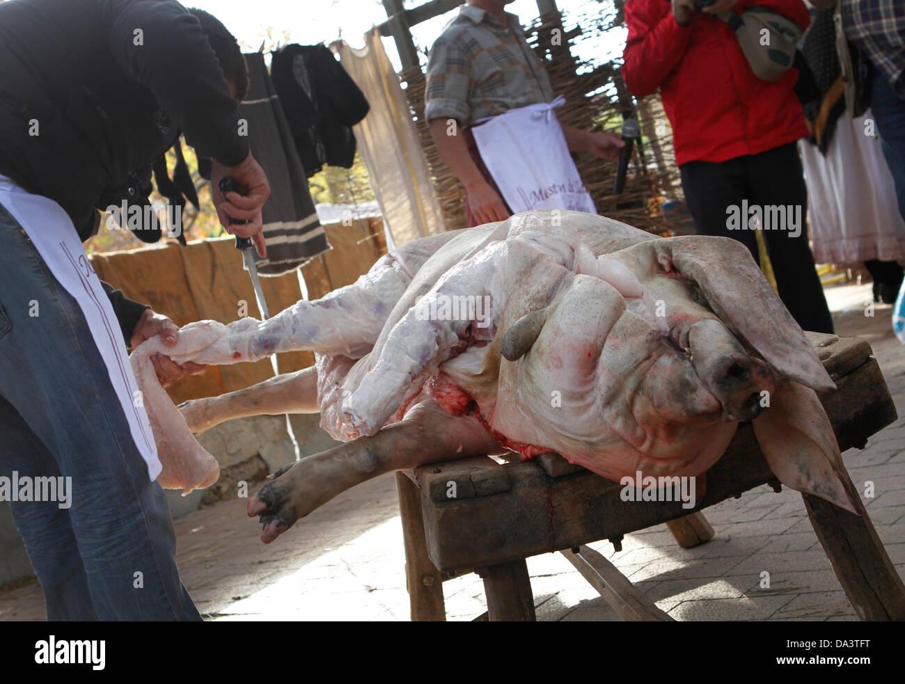 Ein Schlächter Koteletts ein Schwein in Stücke während einer traditionellen Schweinefleisch Fleisch Stockbild