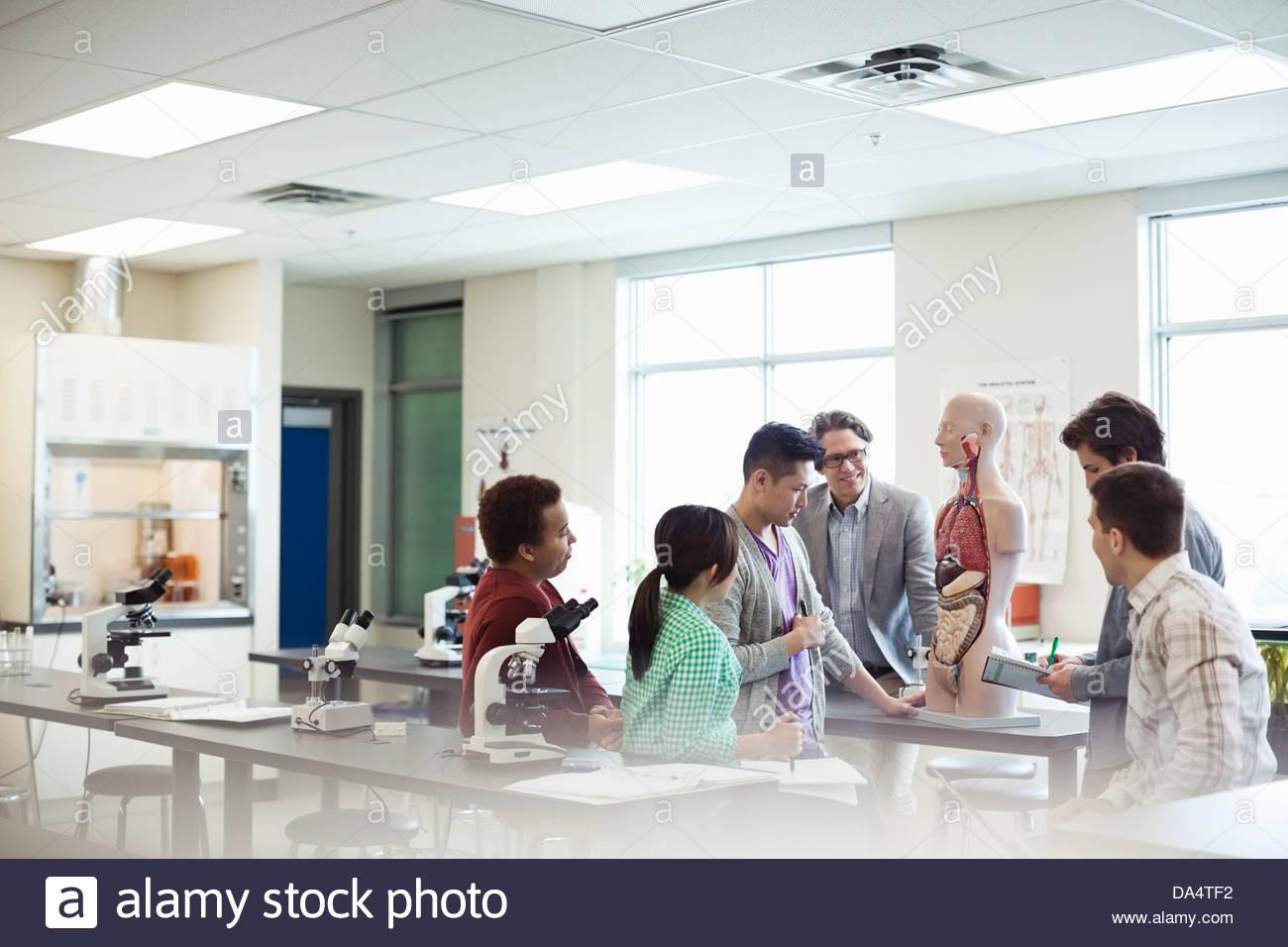 Studierende lernen Anatomie im College Science lab Stockfoto, Bild ...