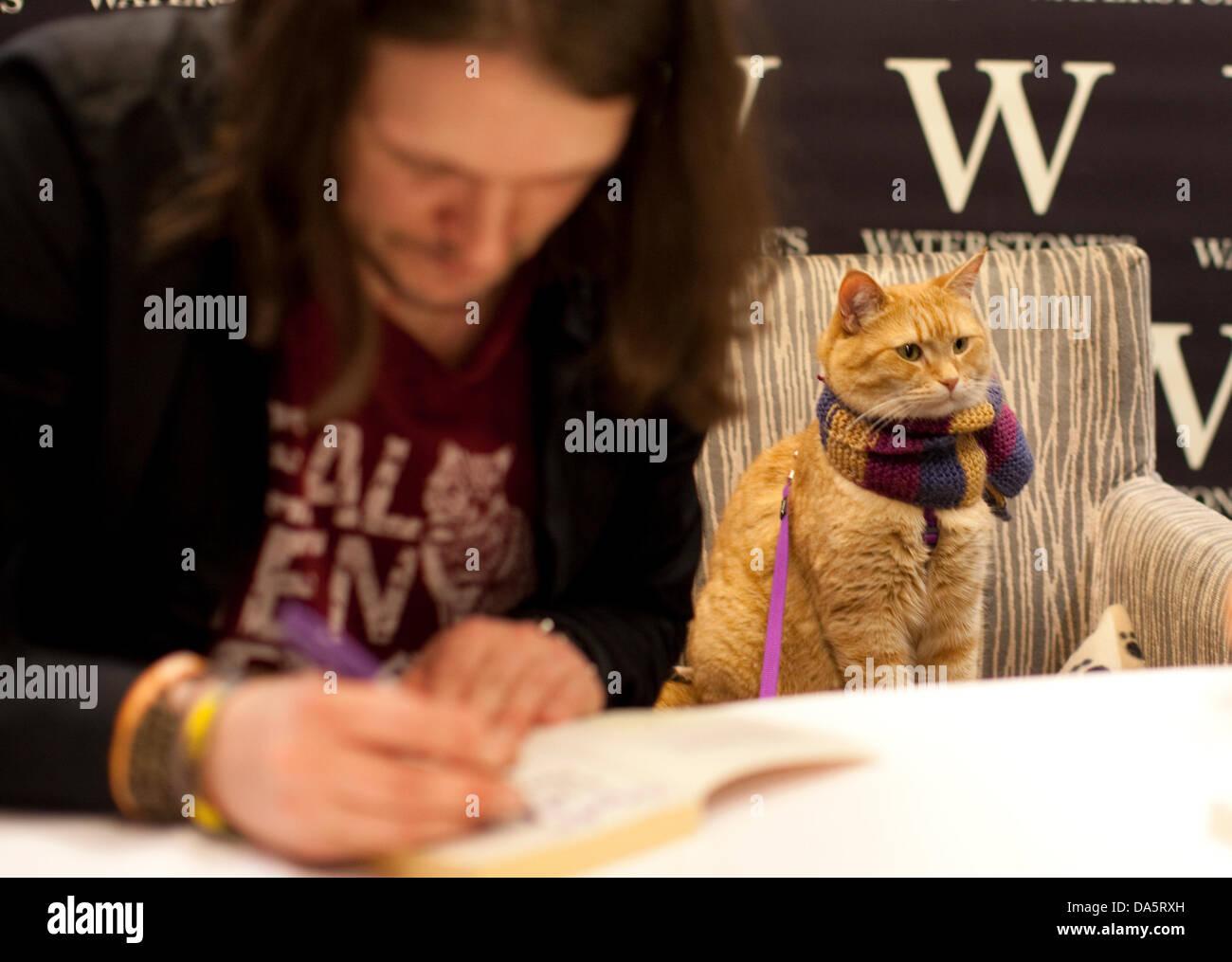 Bob Big Issue Cat Deutsch