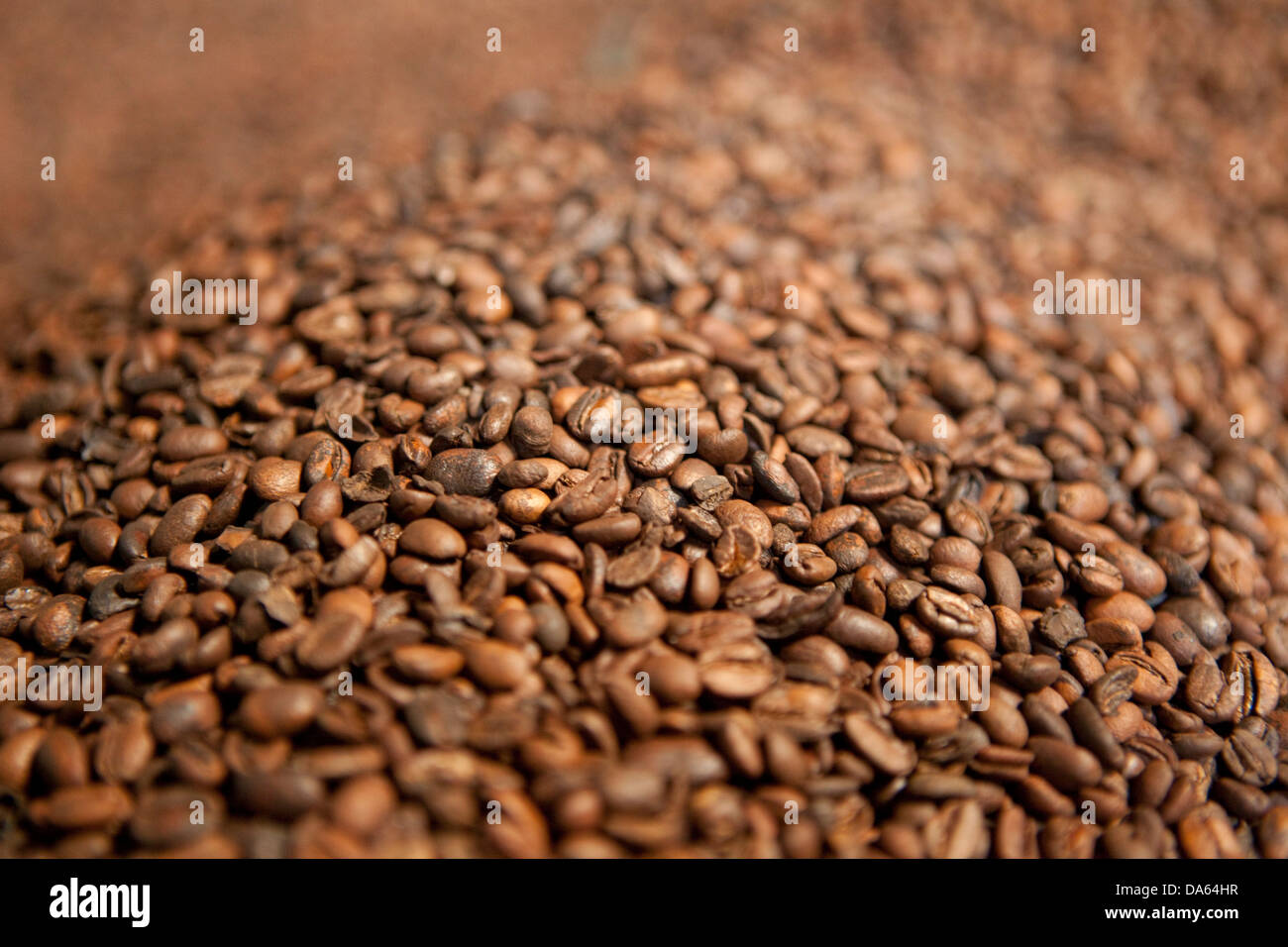 Kaffee, Produktion, Harar, Äthiopien, UNESCO, Weltkulturerbe, Afrika, Stadt, Stadt, Kaffee mahlen, Stockbild