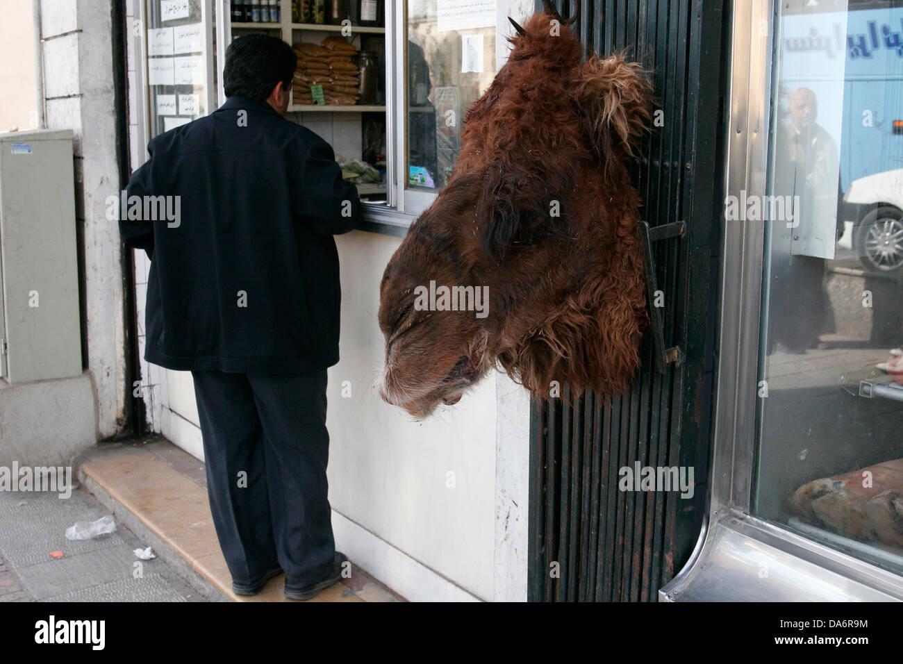 Kamel Kopf Hängen Beim Metzger Kaufen Verkaufen