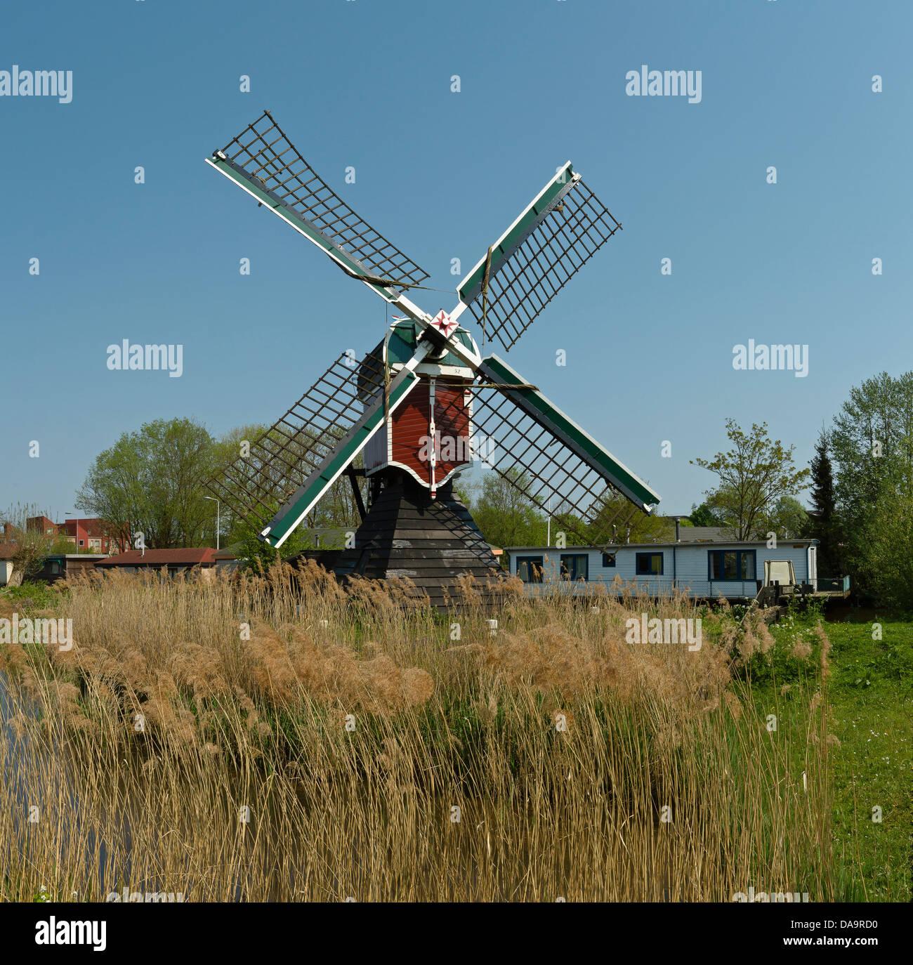 niederlande holland europa leiden windm hle windm hlen fr hling stockfoto bild 57993628. Black Bedroom Furniture Sets. Home Design Ideas