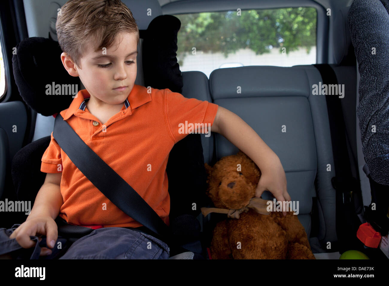 teddy bear in car stockfotos teddy bear in car bilder. Black Bedroom Furniture Sets. Home Design Ideas