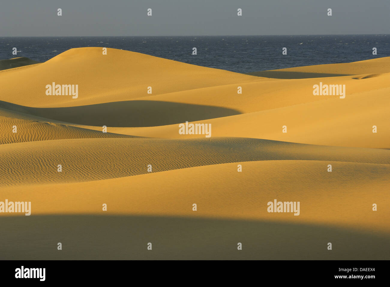 Sanddünen, Maspalomas, Playa del Inglés, Kanarische Inseln, Gran Canaria, Maspalomas Stockbild