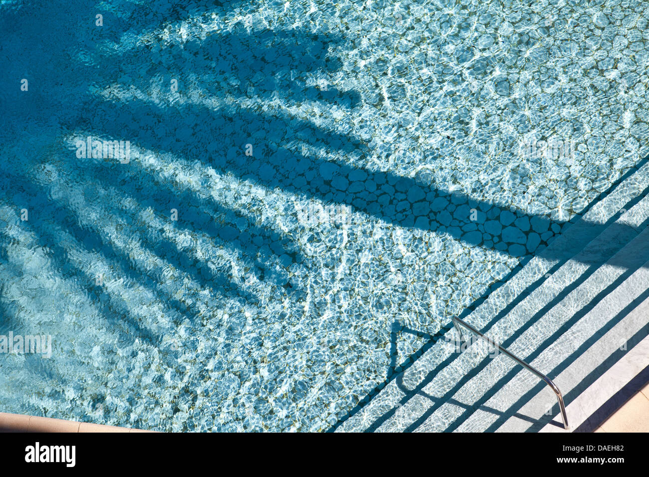 Swimming Pool mit Palmen Baum Schatten im Pool. Stockfoto