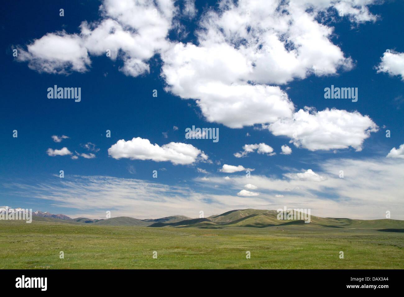 Cumulus-Wolken und blauer Himmel über grüne Felder in der Nähe von Kiefern, Idaho, USA. Stockbild