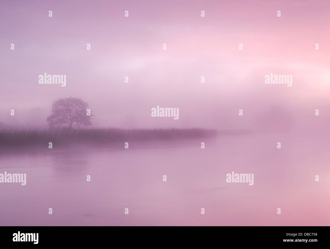 Irische Landschaften, nebliger Morgen an den Ufern des Flusses Boyne County Meath Ireland Stockbild