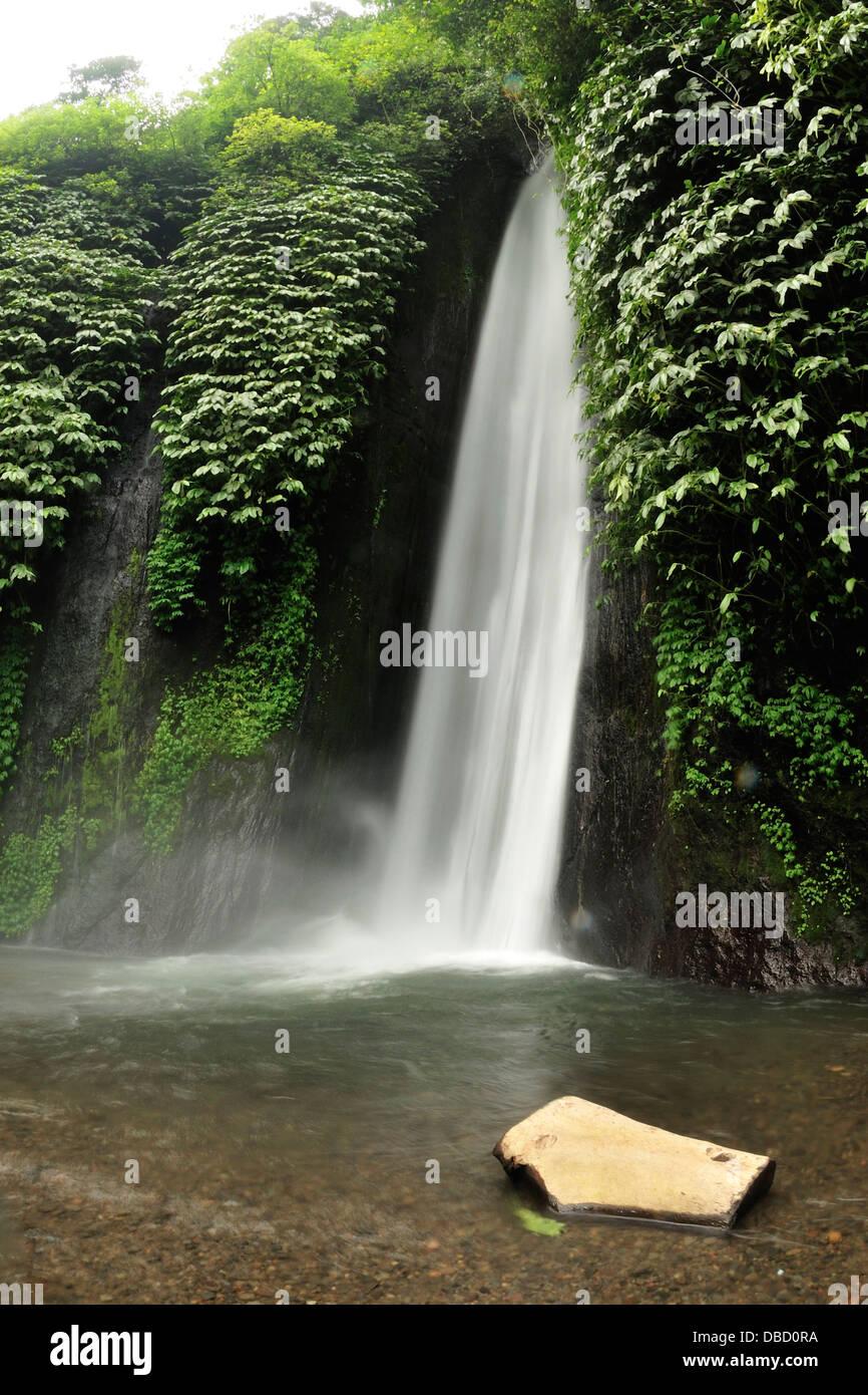 Munduk Wasserfall, Bali, Indonesien, Asien Stockbild