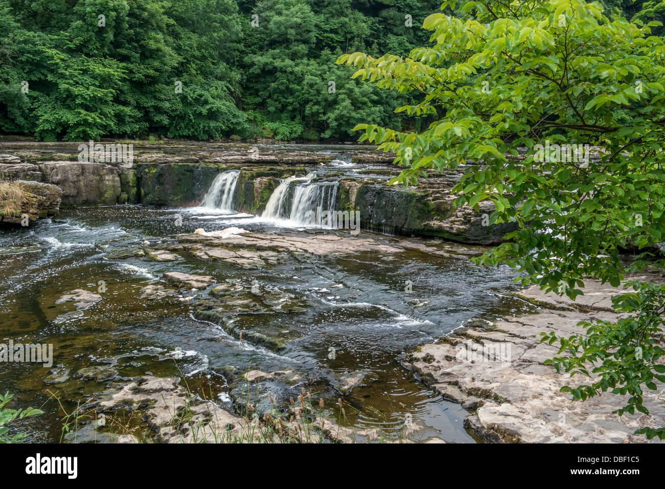 Aysgarth Wasserfälle, Wasser fließt über die Felsen, Stockfoto