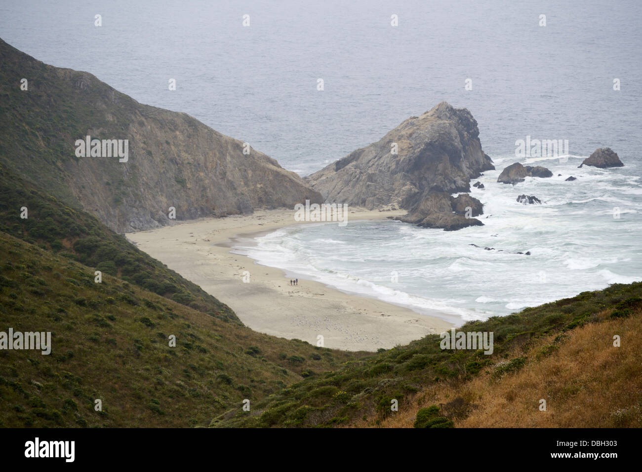 McClures Beach, Point Reyes National Seashore Stockbild
