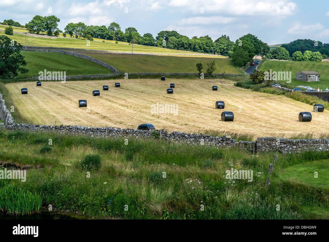 Schwarze Ballen Silage in Bauern Feld Stockfoto