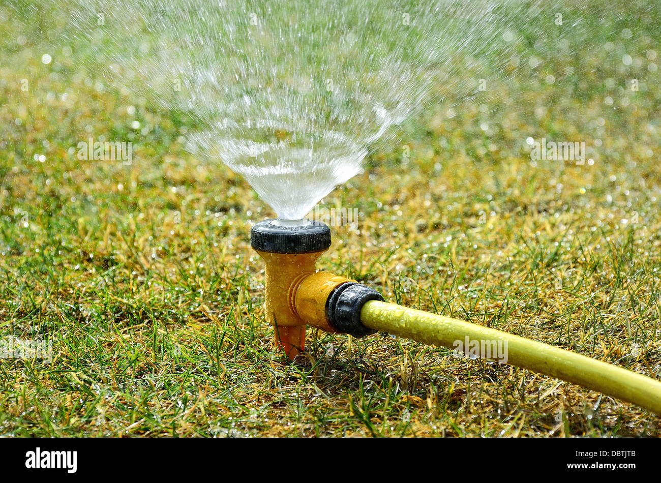 garden watering system stockfotos garden watering system bilder alamy. Black Bedroom Furniture Sets. Home Design Ideas