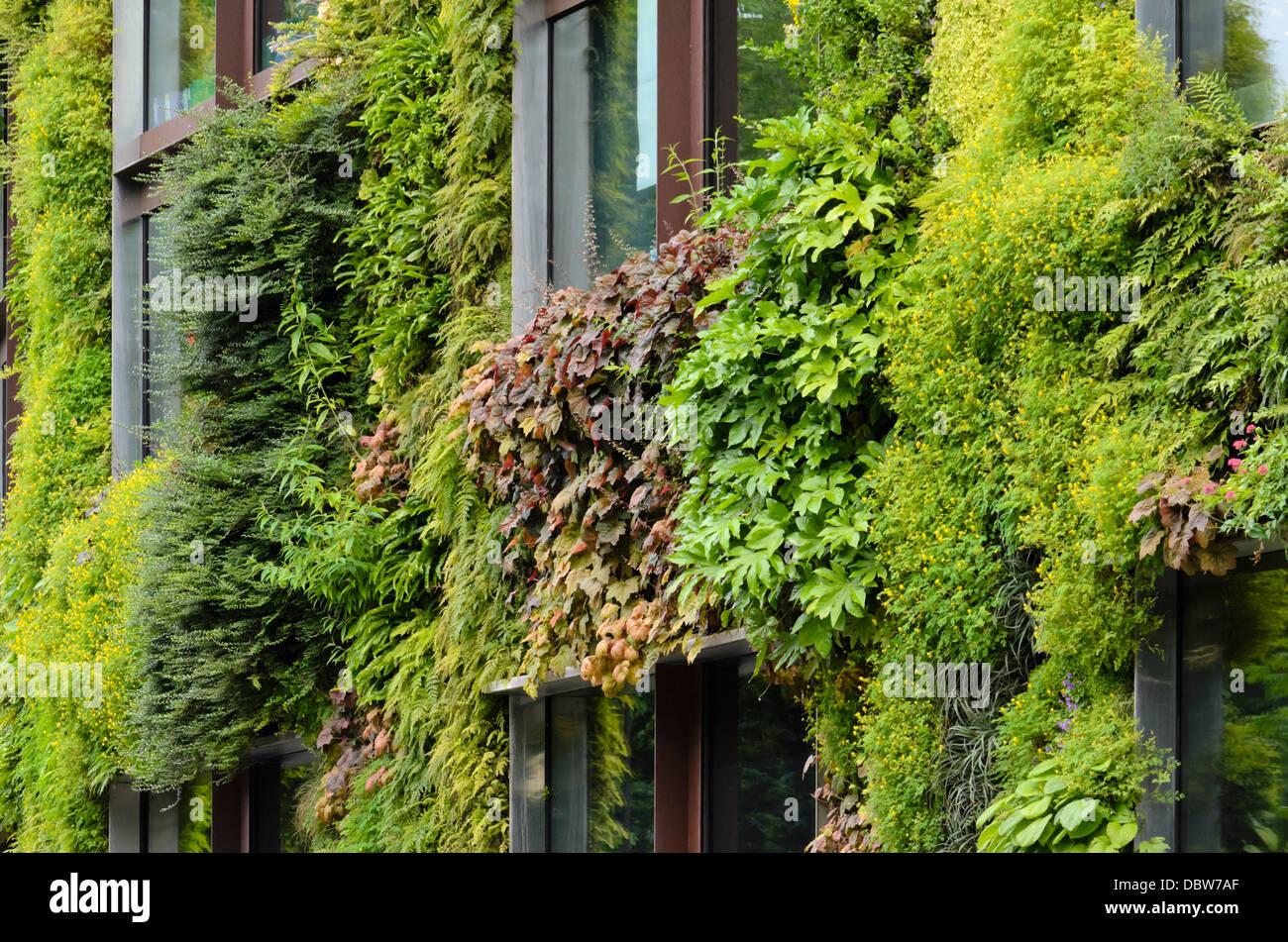 Vertical Garden Patrick Blanc Musee Du Stockfotos & Vertical Garden ...