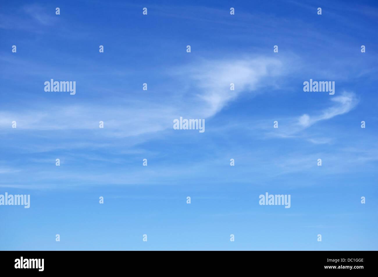Cirruswolken vor blauem Himmel Stockbild