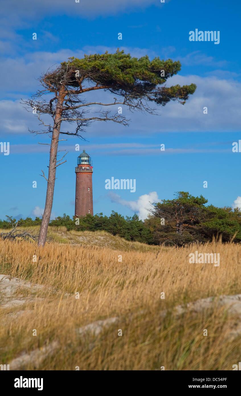 Europa, Deutschland, Mecklenburg-Vorpommern, Fischland-Darß-Zingst, Prerow Leuchtturm Darßer Ort Stockfoto
