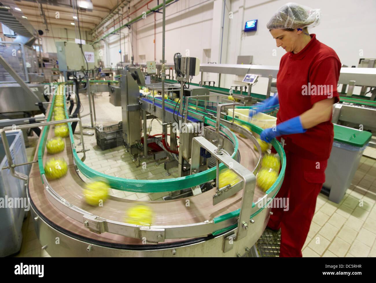 Produktionslinie von Gemüsekonserven und Bohnen in Glasflasche, Mais, Mais, Konservenindustrie, Agrar-und Ernährungswirtschaft, Stockbild