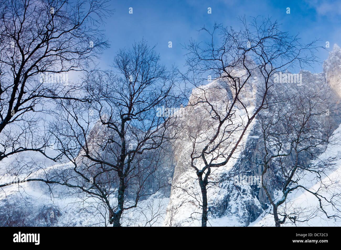 Wintermorgen in Romsdalen Tal in Rauma Kommune, Østfold fylke, Norwegen. Stockbild