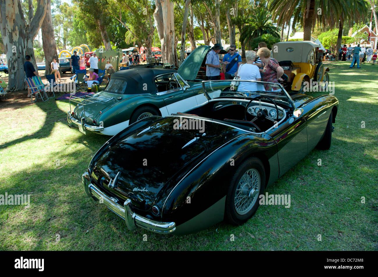 Klassische schwarze Austin-Healey Sportwagen Stockbild